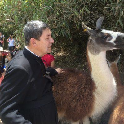 Con la llama en Machu Picchu - Cusco Perú