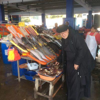 Variedad de peces en Lima